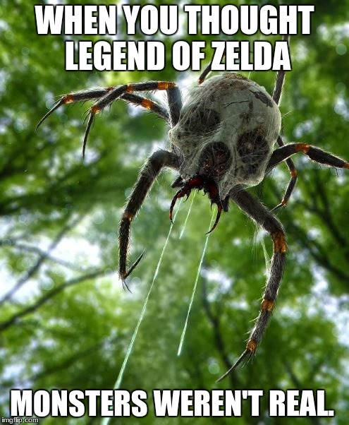 Legend of Zelda Skulluta Real Life | WHEN YOU THOUGHT LEGEND OF ZELDA MONSTERS WEREN'T REAL. | image tagged in funny,the legend of zelda,legend of zelda,ocarina of time,spider,creepy | made w/ Imgflip meme maker