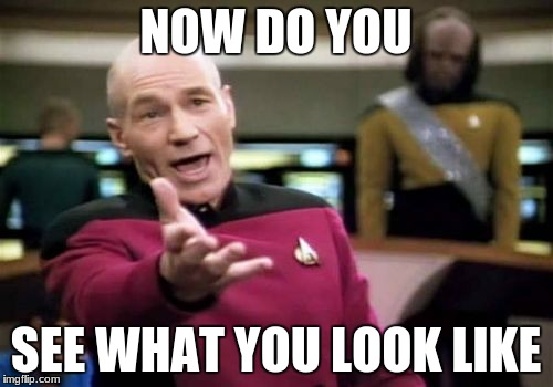Picard Wtf Meme | NOW DO YOU SEE WHAT YOU LOOK LIKE | image tagged in memes,picard wtf | made w/ Imgflip meme maker