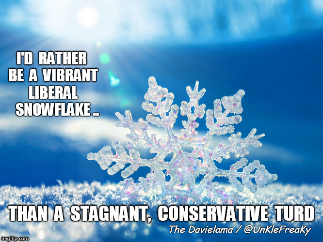 I'D  RATHER BE  A  VIBRANT LIBERAL    SNOWFLAKE .. The Davielama / @UnKleFreaKy THAN  A  STAGNANT,  CONSERVATIVE  TURD | image tagged in facebook snowflake award | made w/ Imgflip meme maker