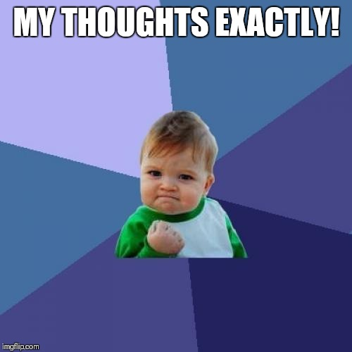 Success Kid Meme | MY THOUGHTS EXACTLY! | image tagged in memes,success kid | made w/ Imgflip meme maker