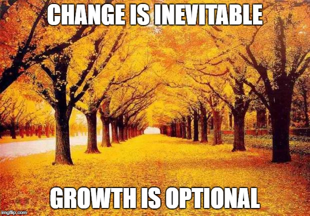 Autumn trees | CHANGE IS INEVITABLE GROWTH IS OPTIONAL | image tagged in autumn trees | made w/ Imgflip meme maker