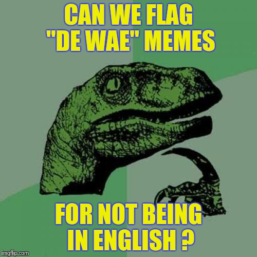 "There must be a way to stop them , please  | CAN WE FLAG ""DE WAE"" MEMES FOR NOT BEING IN ENGLISH ? 