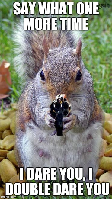 funny squirrels with guns (5) | SAY WHAT ONE MORE TIME I DARE YOU, I DOUBLE DARE YOU | image tagged in funny squirrels with guns 5 | made w/ Imgflip meme maker