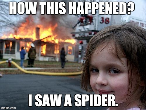 Disaster Girl Meme | HOW THIS HAPPENED? I SAW A SPIDER. | image tagged in memes,disaster girl | made w/ Imgflip meme maker