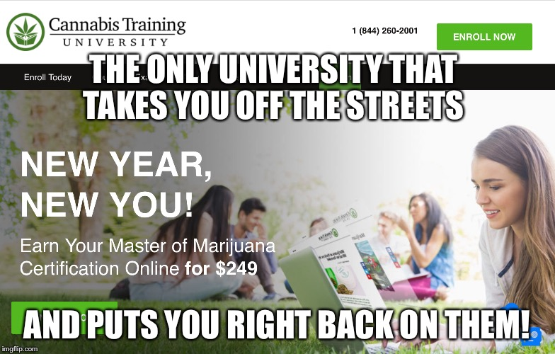 Marijuana university  | THE ONLY UNIVERSITY THAT TAKES YOU OFF THE STREETS AND PUTS YOU RIGHT BACK ON THEM! | image tagged in marijuana university,memes,imgflip | made w/ Imgflip meme maker