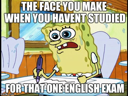What I learned in boating school is | THE FACE YOU MAKE WHEN YOU HAVENT STUDIED FOR THAT ONE ENGLISH EXAM | image tagged in what i learned in boating school is | made w/ Imgflip meme maker