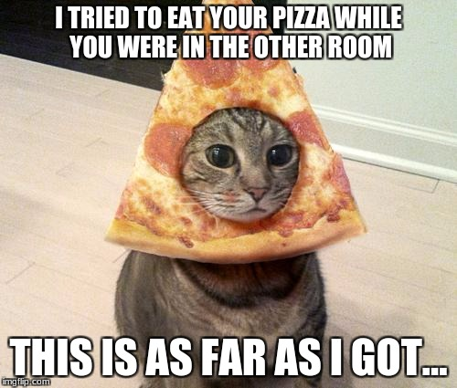 pizza cat | I TRIED TO EAT YOUR PIZZA WHILE YOU WERE IN THE OTHER ROOM THIS IS AS FAR AS I GOT... | image tagged in pizza cat | made w/ Imgflip meme maker