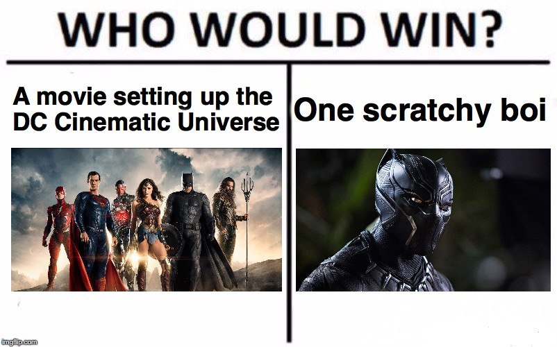 Who Would Win? Meme | A movie setting up the DC Cinematic Universe One scratchy boi | image tagged in memes,who would win | made w/ Imgflip meme maker
