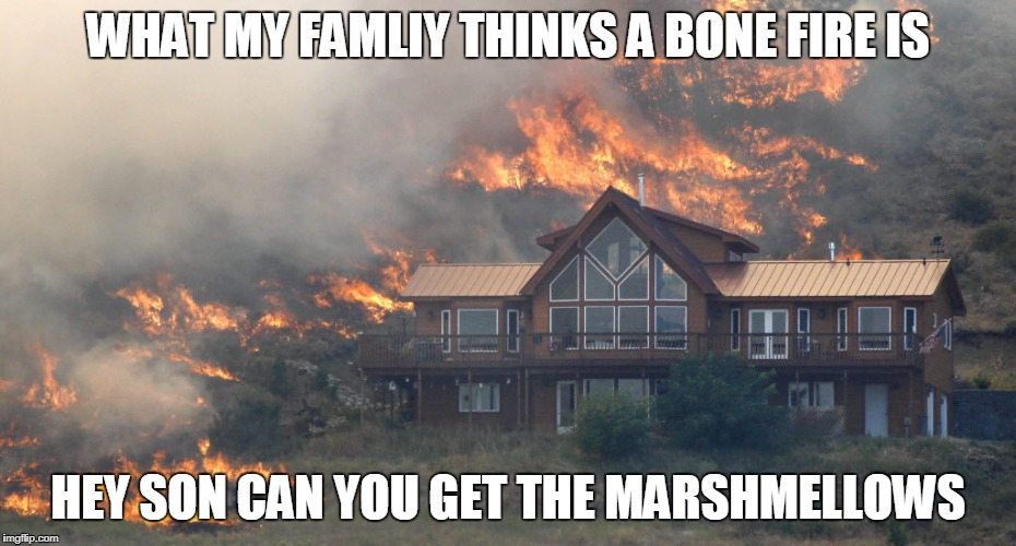 WHAT MY FAMLIY THINKS A BONE FIRE IS HEY SON CAN YOU GET THE MARSHMELLOWS | image tagged in forest fire house | made w/ Imgflip meme maker