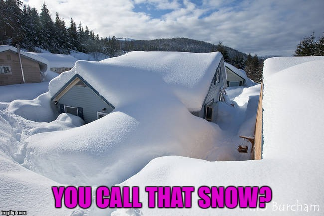 YOU CALL THAT SNOW? | made w/ Imgflip meme maker