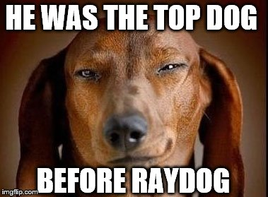 HE WAS THE TOP DOG BEFORE RAYDOG | made w/ Imgflip meme maker