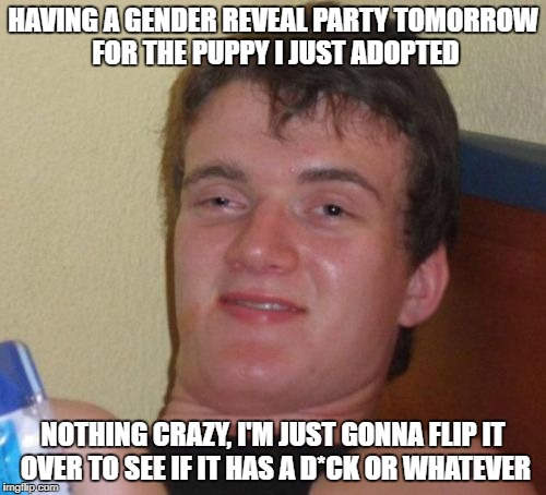 You are cordially invited | HAVING A GENDER REVEAL PARTY TOMORROW FOR THE PUPPY I JUST ADOPTED NOTHING CRAZY, I'M JUST GONNA FLIP IT OVER TO SEE IF IT HAS A D*CK OR WHA | image tagged in memes,10 guy | made w/ Imgflip meme maker