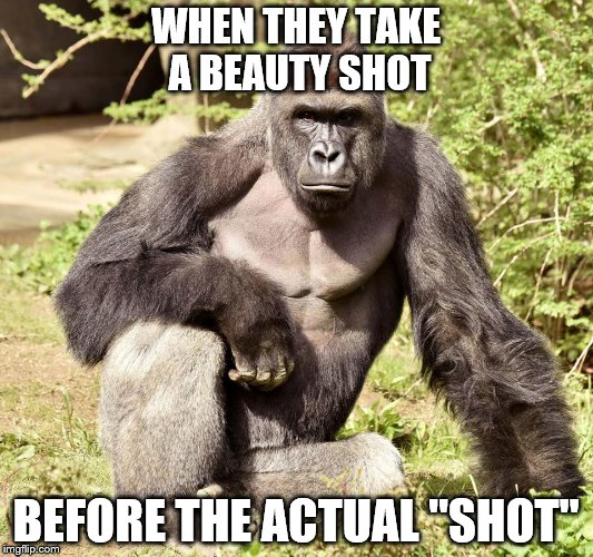 "it actually makes sense now | WHEN THEY TAKE A BEAUTY SHOT BEFORE THE ACTUAL ""SHOT"" 