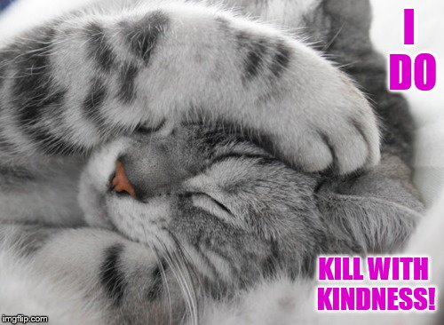 I DO KILL WITH KINDNESS! | made w/ Imgflip meme maker