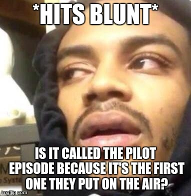 Hits Blunt | *HITS BLUNT* IS IT CALLED THE PILOT EPISODE BECAUSE IT'S THE FIRST ONE THEY PUT ON THE AIR? | image tagged in hits blunt | made w/ Imgflip meme maker