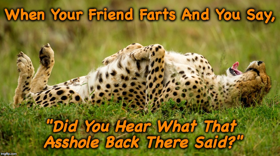 "One Way To Prank A Buddy :-) | When Your Friend Farts And You Say, ""Did You Hear What That Asshole Back There Said?"" 