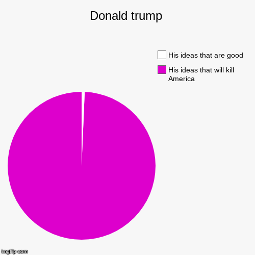 Donald trump | His ideas that will kill America, His ideas that are good | image tagged in funny,pie charts | made w/ Imgflip pie chart maker