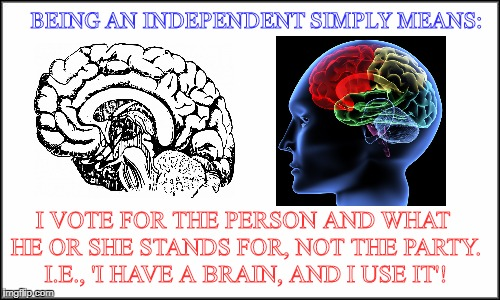 plain white | BEING AN INDEPENDENT SIMPLY MEANS: I VOTE FOR THE PERSON AND WHAT HE OR SHE STANDS FOR, NOT THE PARTY. I.E., 'I HAVE A BRAIN, AND I USE IT'! | image tagged in plain white | made w/ Imgflip meme maker
