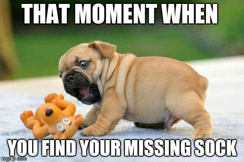 THAT MOMENT WHEN YOU FIND YOUR MISSING SOCK | image tagged in that moment when,cute puppies | made w/ Imgflip meme maker