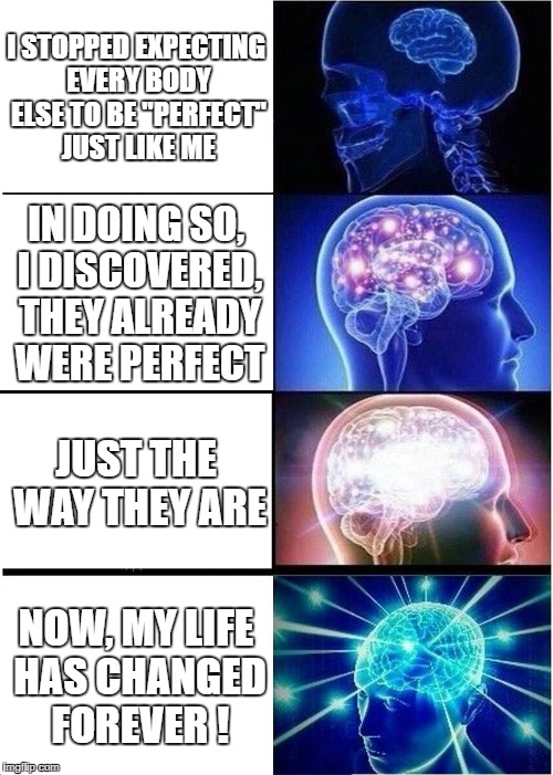 "Expanding Brain Meme | I STOPPED EXPECTING EVERY BODY ELSE TO BE ""PERFECT"" JUST LIKE ME IN DOING SO, I DISCOVERED, THEY ALREADY WERE PERFECT JUST THE WAY THEY ARE  