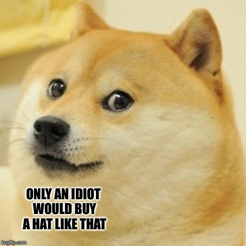 Doge Meme | ONLY AN IDIOT WOULD BUY A HAT LIKE THAT | image tagged in memes,doge | made w/ Imgflip meme maker