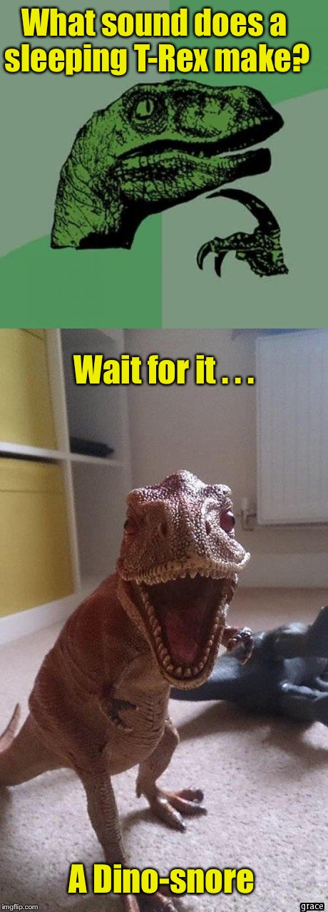 Prehistoric Pun | What sound does a sleeping T-Rex make? A Dino-snore Wait for it . . . | image tagged in memes,philosoraptor,t-rex,bad puns,bad pun,dinosaur | made w/ Imgflip meme maker