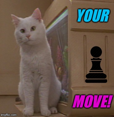 YOUR MOVE! | made w/ Imgflip meme maker