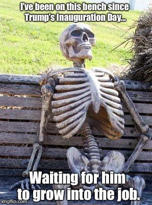Waiting Skeleton Meme | I've been on this bench since Trump's Inauguration Day... Waiting for him to grow into the job. | image tagged in memes,waiting skeleton | made w/ Imgflip meme maker