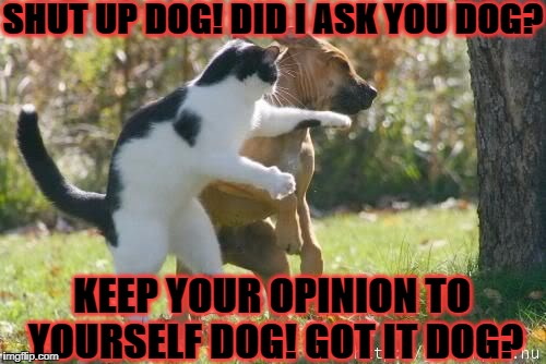 DOG ABUSER | SHUT UP DOG! DID I ASK YOU DOG? KEEP YOUR OPINION TO YOURSELF DOG! GOT IT DOG? | image tagged in dog abuser | made w/ Imgflip meme maker