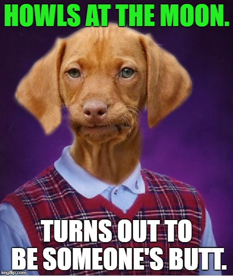 Bad Luck Dog | HOWLS AT THE MOON. TURNS OUT TO BE SOMEONE'S BUTT. | image tagged in bad luck dog | made w/ Imgflip meme maker