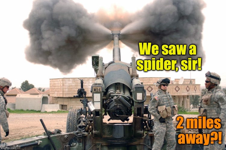 Can't be too careful guarding our perimeter, sir! | We saw a spider, sir! 2 miles away?! | image tagged in memes,howitzer,spider kill,funny memes,2 miles,drsarcasm | made w/ Imgflip meme maker