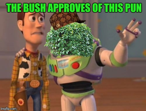 X, X Everywhere Meme | THE BUSH APPROVES OF THIS PUN | image tagged in memes,x,x everywhere,x x everywhere,scumbag | made w/ Imgflip meme maker