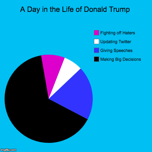 A Day in the Life of Donald Trump | Making Big Decisions, Giving Speeches, Updating Twitter, Fighting off Haters | image tagged in funny,pie charts | made w/ Imgflip pie chart maker