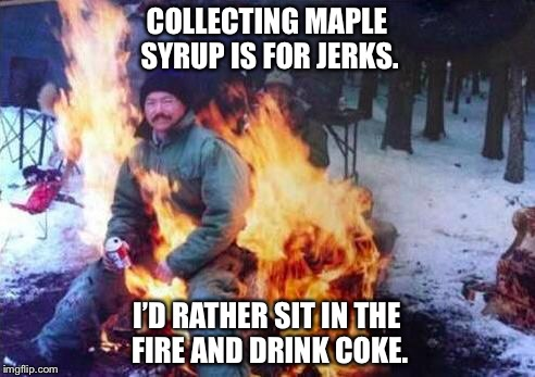 LIGAF | COLLECTING MAPLE SYRUP IS FOR JERKS. I'D RATHER SIT IN THE FIRE AND DRINK COKE. | image tagged in memes,ligaf | made w/ Imgflip meme maker