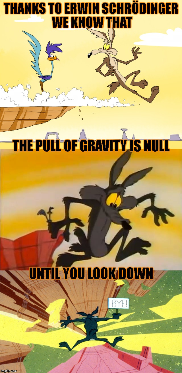 Oops! Did I Just Disprove Schrodinger? | THANKS TO ERWIN SCHRÖDINGER WE KNOW THAT UNTIL YOU LOOK DOWN THE PULL OF GRAVITY IS NULL | image tagged in schrodinger,roadrunner,gravity,paradox,physics,science | made w/ Imgflip meme maker