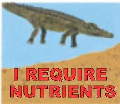Just another dumb meme I made | I REQUIRE NUTRIENTS | image tagged in memes,funny,aligator | made w/ Imgflip meme maker