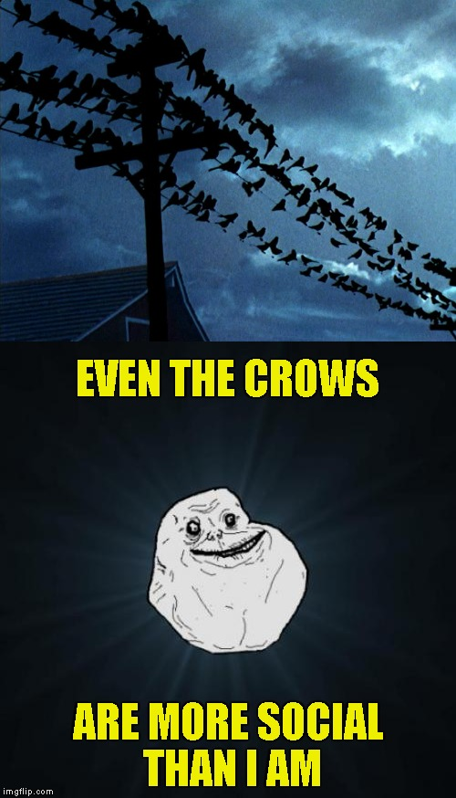 After the first 3 Resident Evil games,I get a strong feeling of panic when I see a bunch of crows around.... | EVEN THE CROWS ARE MORE SOCIAL THAN I AM | image tagged in memes,forever alone,crows,powermetalhead,resident evil,funny | made w/ Imgflip meme maker