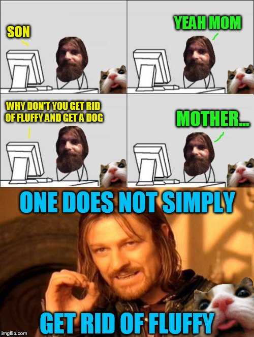 Fluffy is Evilmandoevil's version of a Teddy Bear | SON ONE DOES NOT SIMPLY YEAH MOM WHY DON'T YOU GET RID OF FLUFFY AND GET A DOG MOTHER... GET RID OF FLUFFY | image tagged in meme,evilmandoevil,fluffy,dog,one does not simply,cat | made w/ Imgflip meme maker