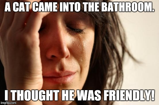 First World Problems Meme | A CAT CAME INTO THE BATHROOM. I THOUGHT HE WAS FRIENDLY! | image tagged in memes,first world problems | made w/ Imgflip meme maker