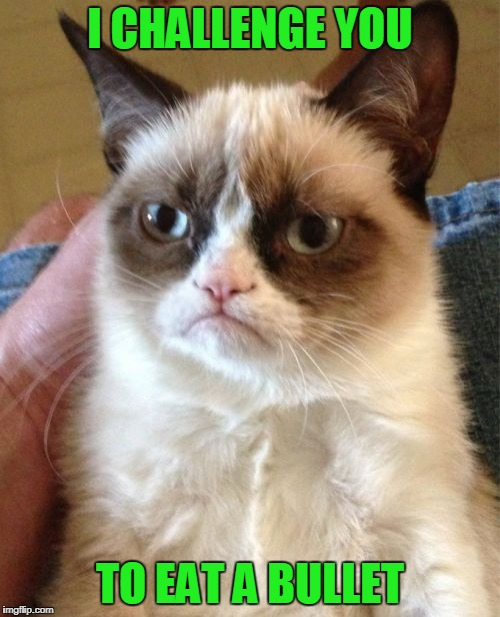 Make it go viral! | I CHALLENGE YOU TO EAT A BULLET | image tagged in memes,grumpy cat | made w/ Imgflip meme maker
