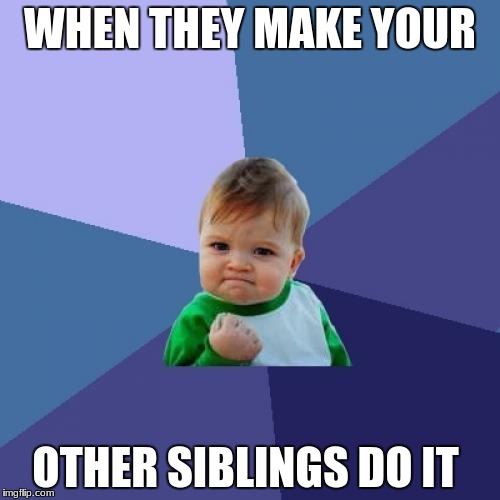 Success Kid Meme | WHEN THEY MAKE YOUR OTHER SIBLINGS DO IT | image tagged in memes,success kid | made w/ Imgflip meme maker