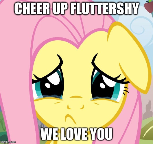 sad fluttershy | CHEER UP FLUTTERSHY WE LOVE YOU | image tagged in sad fluttershy | made w/ Imgflip meme maker