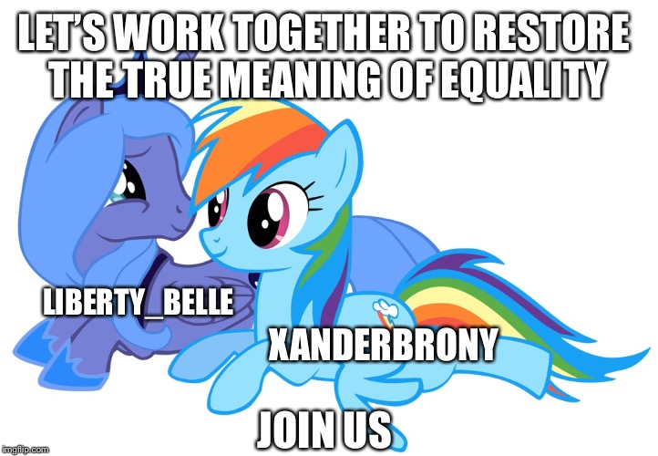 Enough with the hate and inequality. A house divided cannot stand. | LIBERTY_BELLE XANDERBRONY LET'S WORK TOGETHER TO RESTORE THE TRUE MEANING OF EQUALITY JOIN US | image tagged in the true meaning of equality,no political memes,rebuild the house,xanderbrony,stop the political memes | made w/ Imgflip meme maker