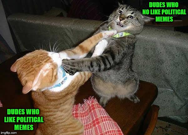 There will soon be a war... a war on Imgflip. A war where people will fight, bleed, and die to protect their ideal | DUDES WHO NO LIKE POLITICAL MEMES DUDES WHO LIKE POLITICAL MEMES | image tagged in two cats fighting for real,memes,imgflip | made w/ Imgflip meme maker