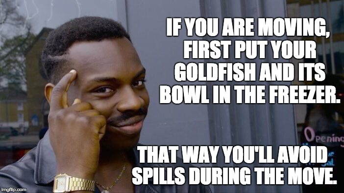 Roll Safe Think About It Meme | IF YOU ARE MOVING, FIRST PUT YOUR GOLDFISH AND ITS BOWL IN THE FREEZER. THAT WAY YOU'LL AVOID SPILLS DURING THE MOVE. | image tagged in memes,roll safe think about it | made w/ Imgflip meme maker