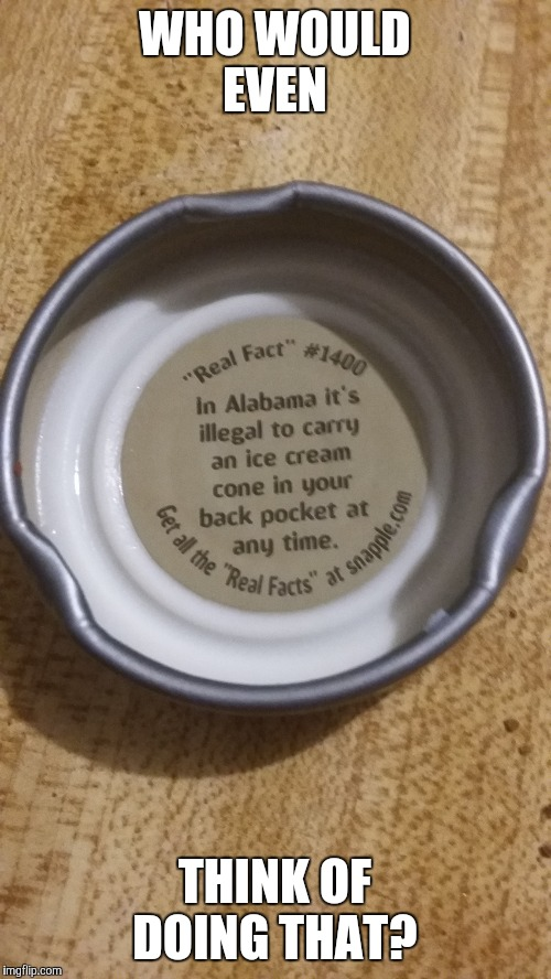 Did 10 Guy write this Snapple Fact? | WHO WOULD EVEN THINK OF DOING THAT? | image tagged in memes,snapple,wtf,really,special kind of stupid | made w/ Imgflip meme maker