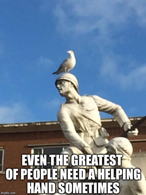 It looks like the Haystings direct advert from a few years back | EVEN THE GREATEST OF PEOPLE NEED A HELPING HAND SOMETIMES | image tagged in memes,other,animals,statue,soldier,seagull | made w/ Imgflip meme maker