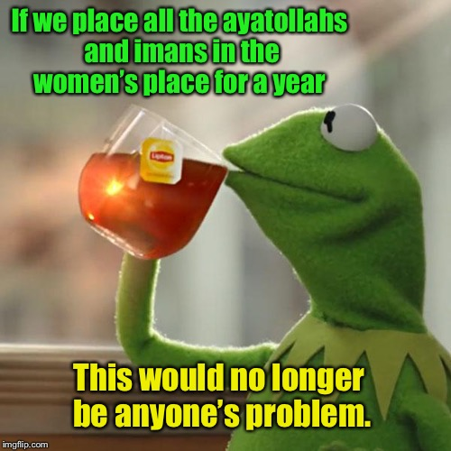 But Thats None Of My Business Meme | If we place all the ayatollahs and imans in the women's place for a year This would no longer be anyone's problem. | image tagged in memes,but thats none of my business,kermit the frog | made w/ Imgflip meme maker