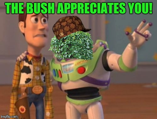 X, X Everywhere Meme | THE BUSH APPRECIATES YOU! | image tagged in memes,x,x everywhere,x x everywhere,scumbag | made w/ Imgflip meme maker