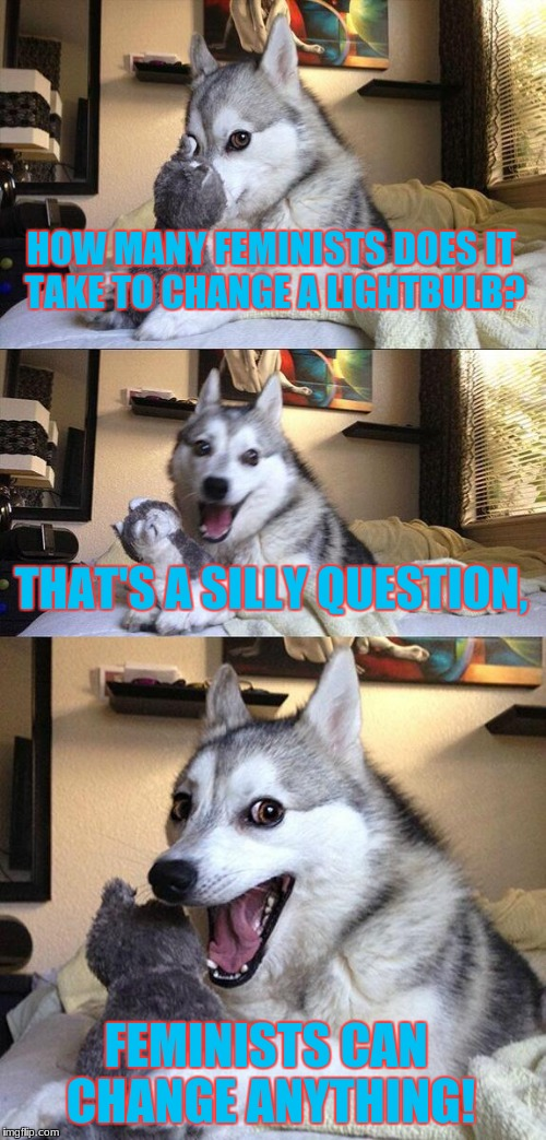 Controversial Joke Dog | HOW MANY FEMINISTS DOES IT TAKE TO CHANGE A LIGHTBULB? THAT'S A SILLY QUESTION, FEMINISTS CAN CHANGE ANYTHING! | image tagged in memes,bad pun dog | made w/ Imgflip meme maker
